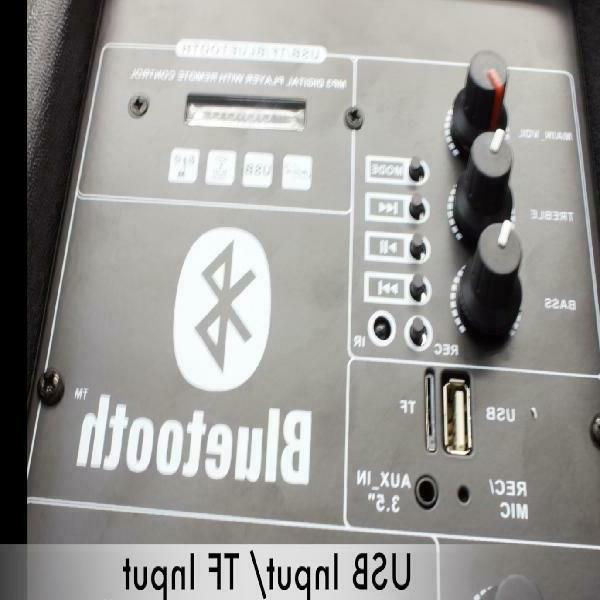"Portable Bass Stereo 12"""